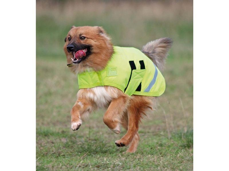 High Vis Yellow Waterproof Dog Coats