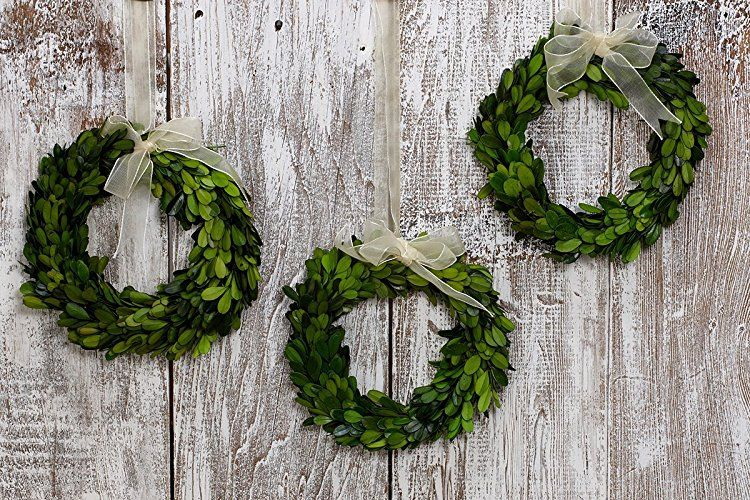 Pnd S Handcrafted Naturally Dried Organic Floral Wreaths Preserved Boxwood Circular Wreath Sets Boxwood Wreath Wreaths Floral Wreath