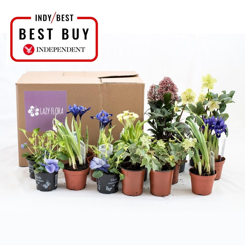 Seasonal outdoor plant subscription, pay as you go