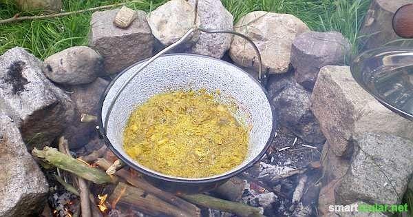 Kleine leckere Sonnen: Löwenzahn als Sirup und im Salatdressing #kleinekräutergärten