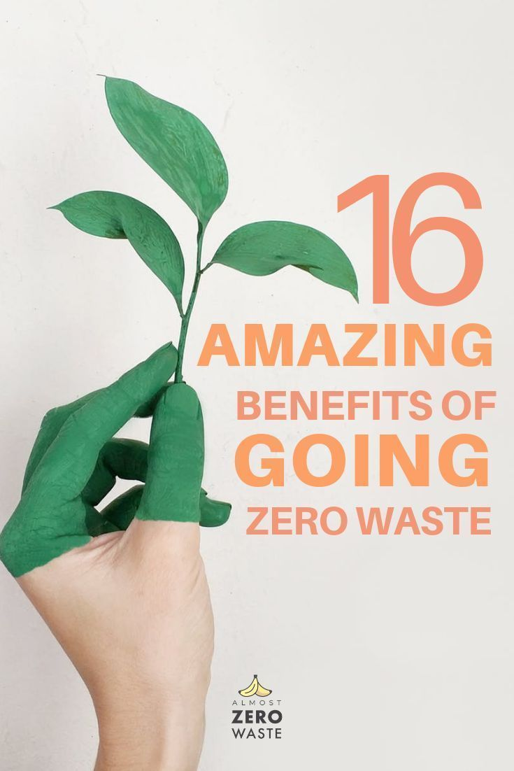 Photo of What does going zero waste mean and what are the economic, personal and environmental benefits? Find