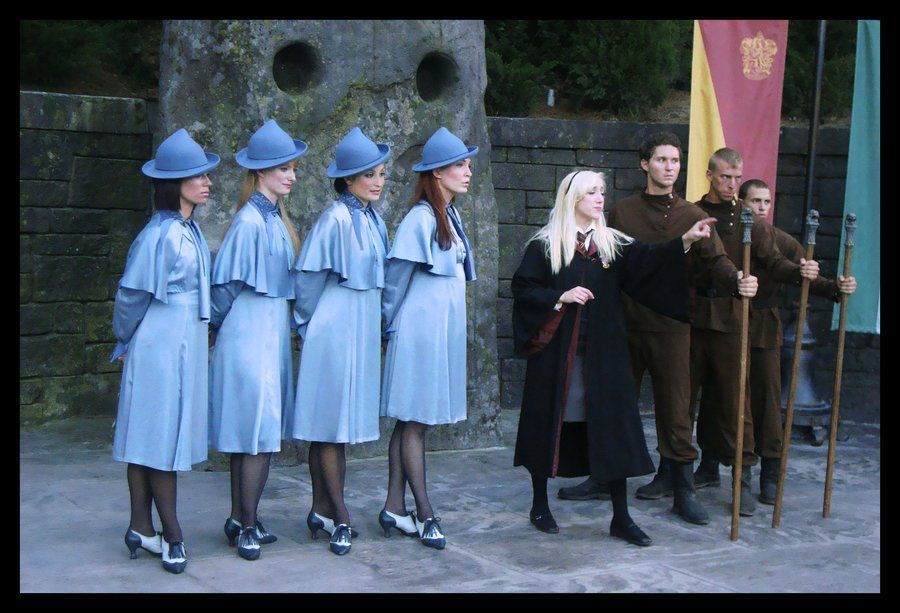 Beauxbatons Durmstrang And Hogwarts Students Harry Potter Halloween Costumes Harry Potter Costume Harry Potter Cosplay 10 reasons dumbledore was the worst headmaster of hogwarts. harry potter halloween costumes harry