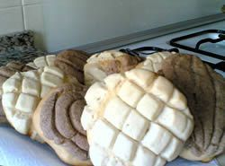 (Mexican Sweet Bread) Yum... I'd Pinch That! | Conchas (Mexican Sweet Bread)Yum... I'd Pinch That! | Conchas (Mexican Sweet Bread)