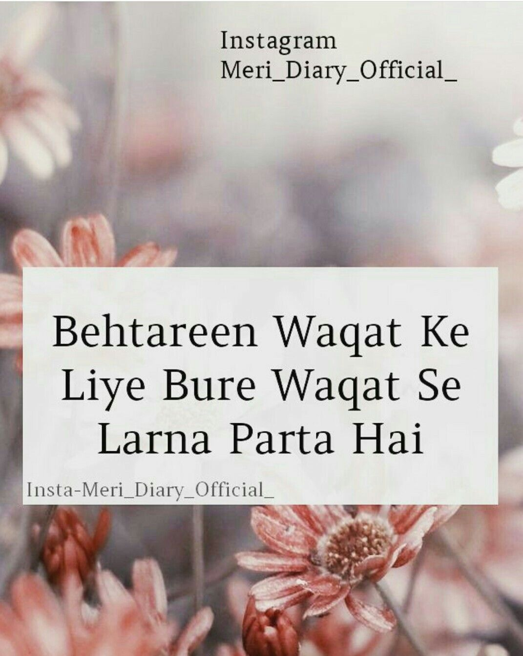 Miss Bushra Kakar Shonadoll Quran Quotes Love Muslim Love Quotes Silence Quotes