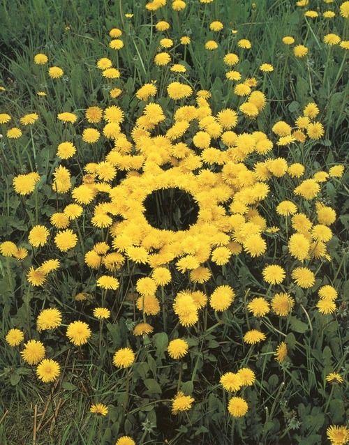 Andy Goldsworthy Oeuvres top 20 des oeuvres de land art insolites ou l'art de jouer avec la