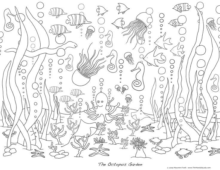Amazing Sea Life Coloring Pages 25 Coloring Pages For Adults