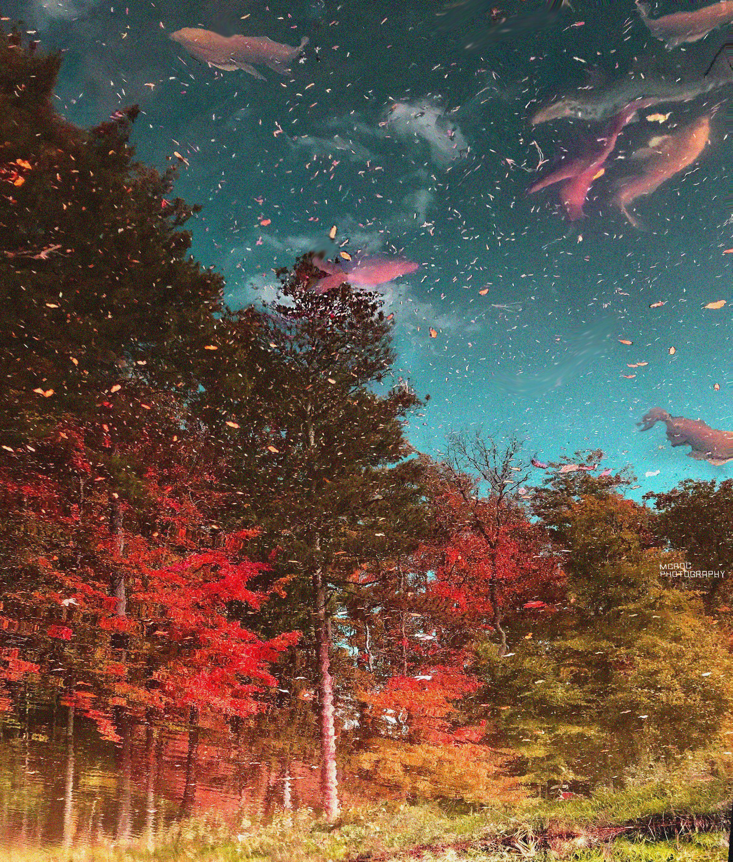 Top 20 Colorful Inspiring Landscapes Photography Lake Landscape Spring Wallpaper Nature Wallpaper