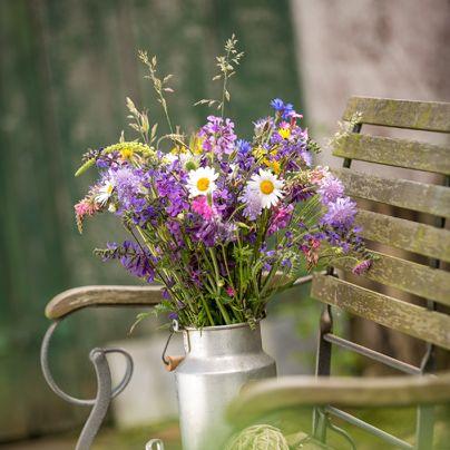 wildg rtnerfreude der richtige schnitt motiv blumen pinterest wildblumen strau e und blumen. Black Bedroom Furniture Sets. Home Design Ideas