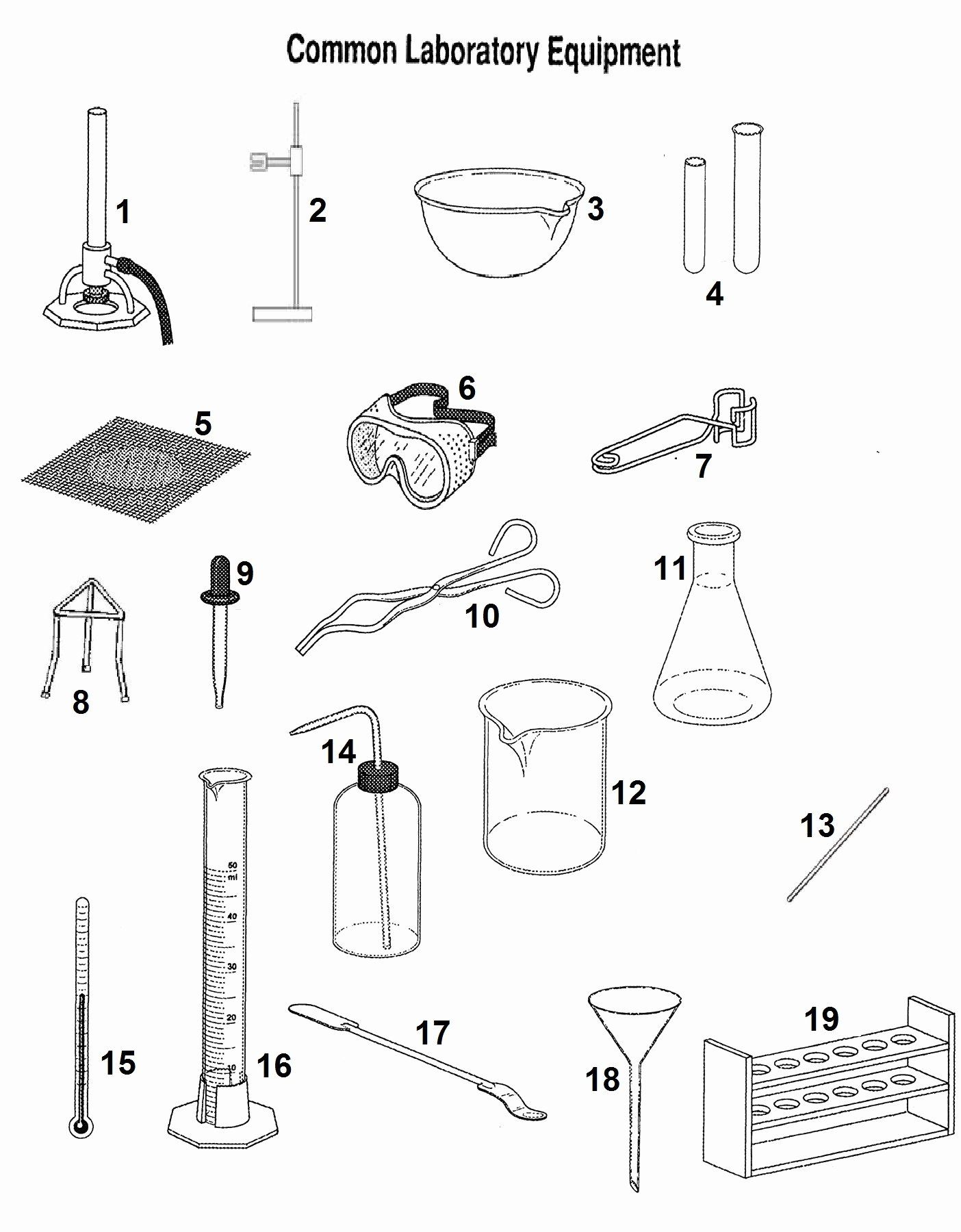 Lab Safety Symbols Worksheet New Lab Safety Symbols