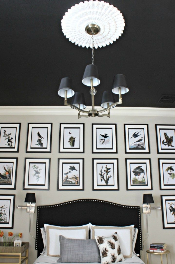 Black Ceiling Medallion Extraordinary Guest Room With Black Ceiling And White Ceiling Medallion From Decorating Inspiration