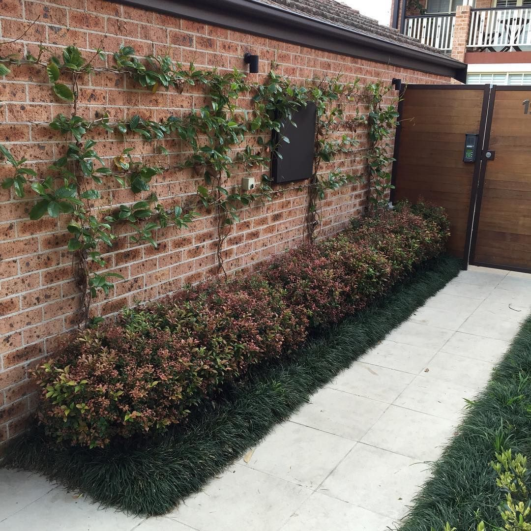 We still enjoy this simple front entrance to this terrace house in ...