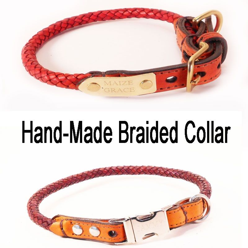 Pitbull Dog Breeders In Bangalore Braided Leather Dog Co