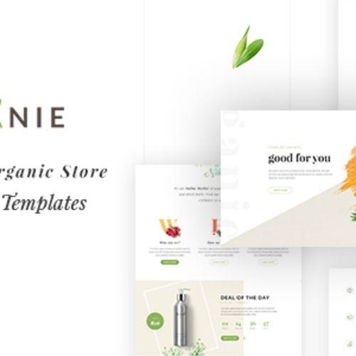 A Delightful Organic Store
