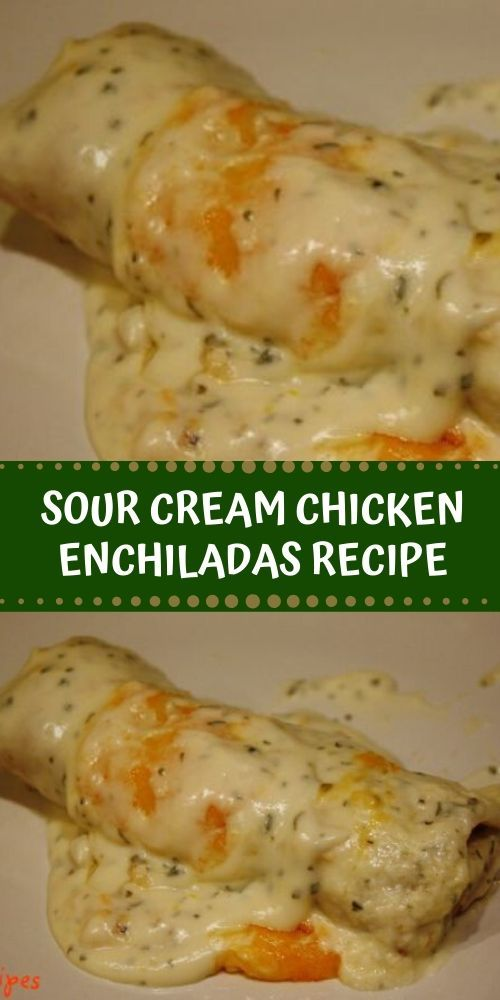 Ingredients 16 Oz Sour Cream 1 Can Cream Of Chicken Soup 1 Tbls Fresh Chopped Cilan Mexican Food Recipes Sour Cream Chicken Enchilada Recipe Recipes