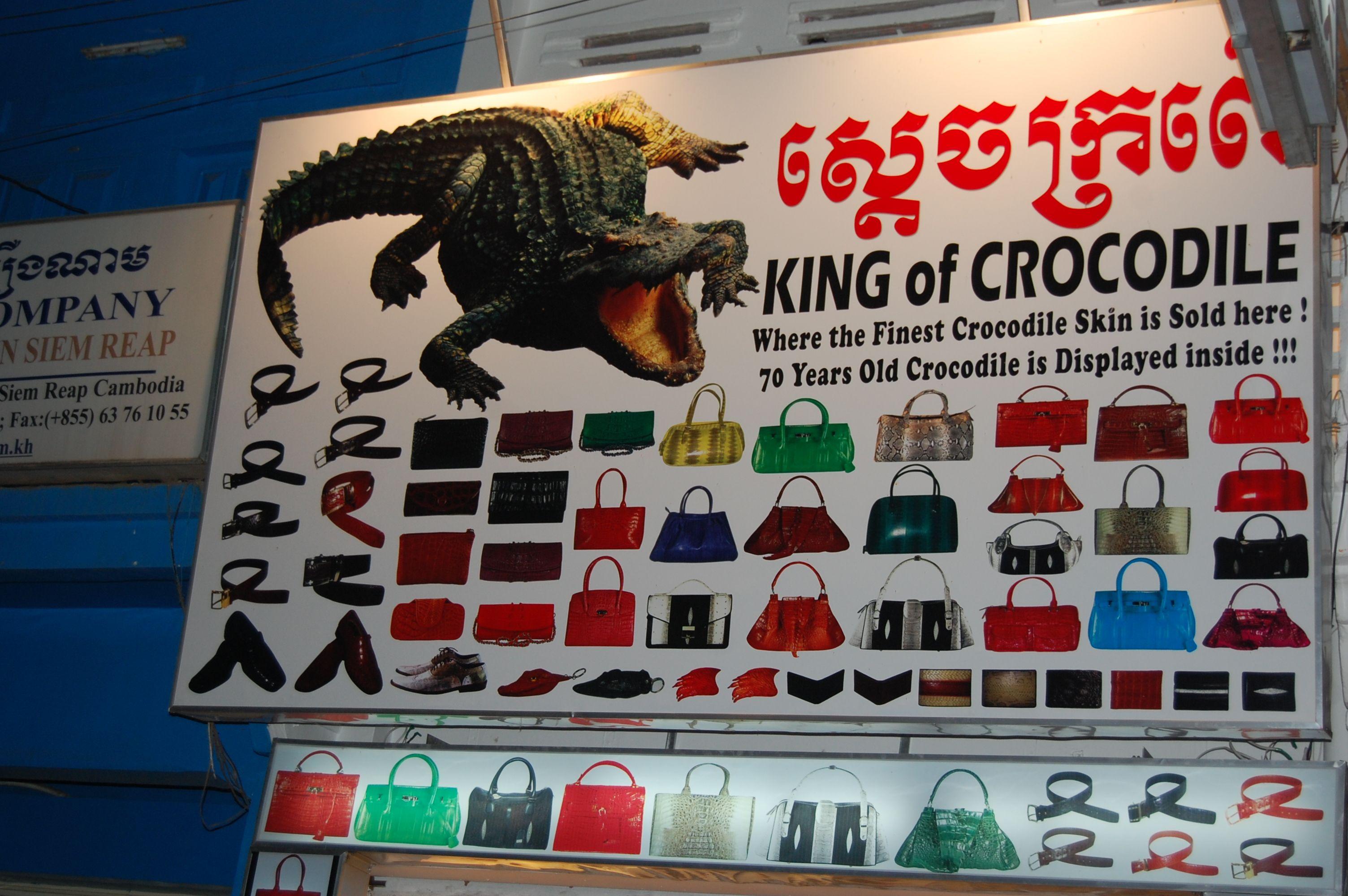 In centro città ,Angkor  Cambogia, un negozio espone i manufatti con pelle di coccodrillo