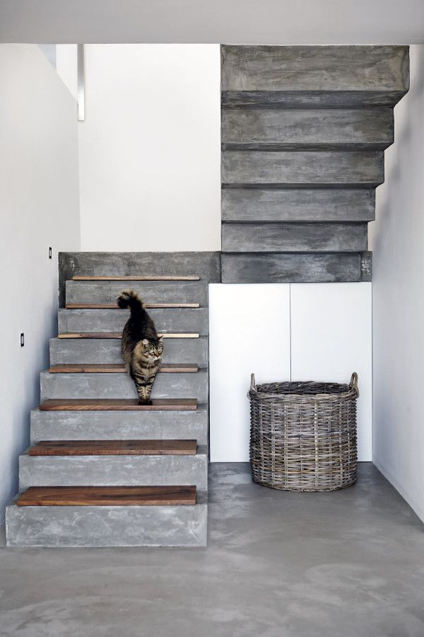 Cement Stairs With Kiaat Treads Lead From The Entrance Hall To The Top Floor Concrete Staircase Stairs Architecture House Stairs