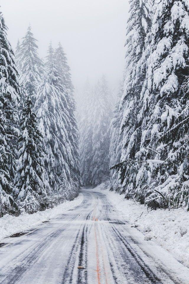 winter-lover