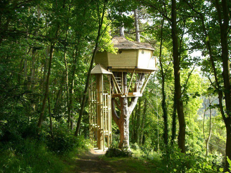 Chambre D Hotes La Cabane De Cecile A Etretat Hebergement Insolite Cabane Dans Les Arbres Perchee A 8m Beautiful Tree Houses Tree House Building A Treehouse