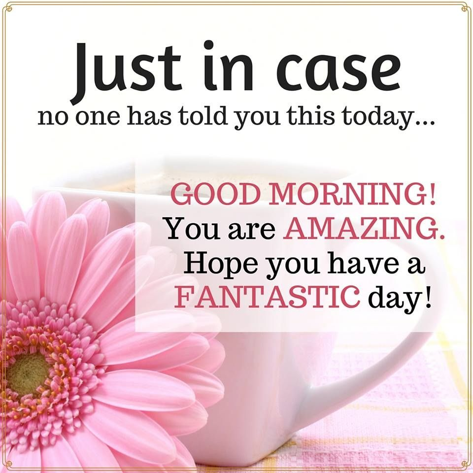 GOOD MORNING! You are AMAZING. Hope you have a FANTASTIC day