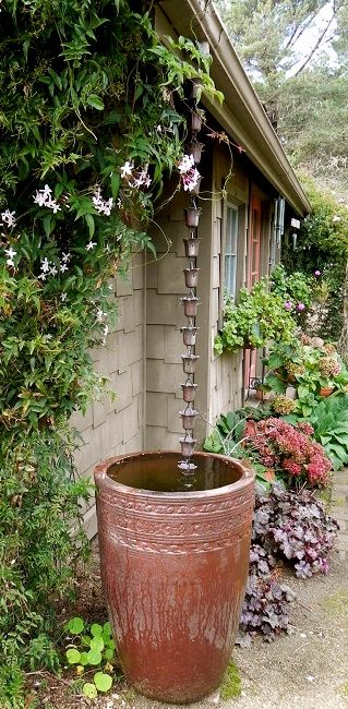 What Is A Rain Chain Free Shipping Everyday Rain Garden Design Front Yard Flowers Backyard