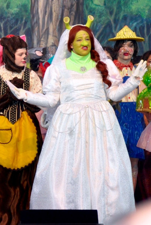 Fionas Wedding Dress Shrek Costumes Disney Broadway Shows