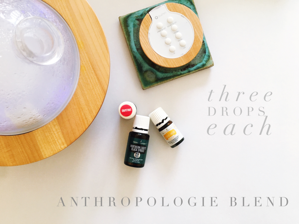 Anthropologie Blend | Volcano Candle | 3 drops of northern lights black spruce, citrus fresh and grapefruit