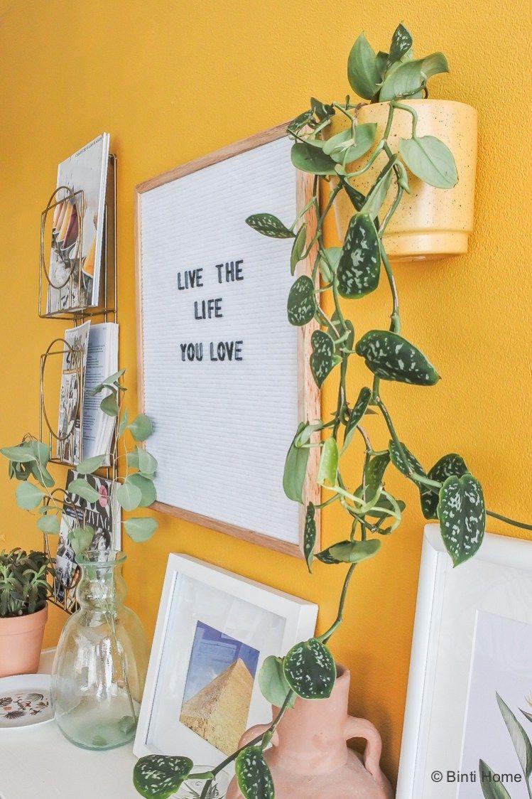 Uitgelicht : Wildernis plantenpot collectie 'Nelis
