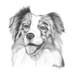 Australian Shepherd Keychains Australian Shepherd Key Chains Custom Keychains Cafepress Dog Drawing Simple Dog Paintings Dog Drawing