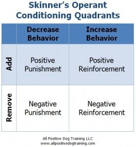 Skinner S Quadrant Series Part 1 Operant Conditioning Applied