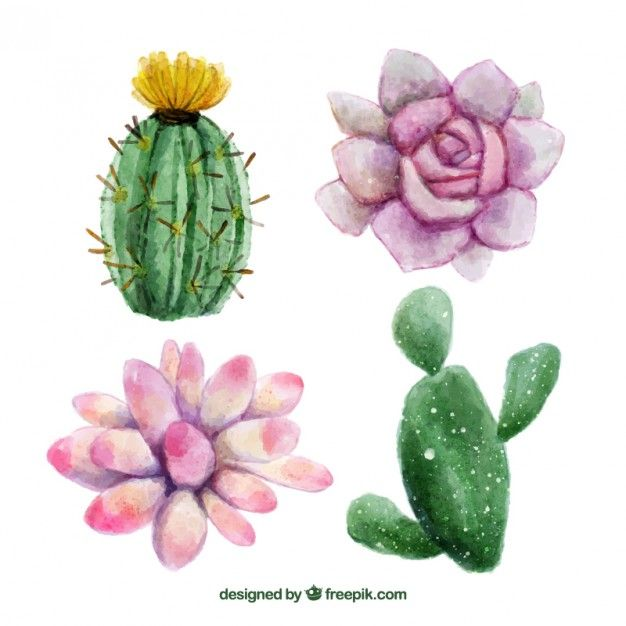 Download Watercolor Hand Painted Flowers And Cactus For Free