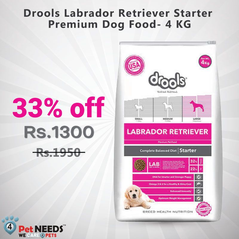 Buy Drools Labrador Retriever Starter Premium Dog Food 4 Kg Online Premium Dog Food Dog Food Online Dog Food Recipes