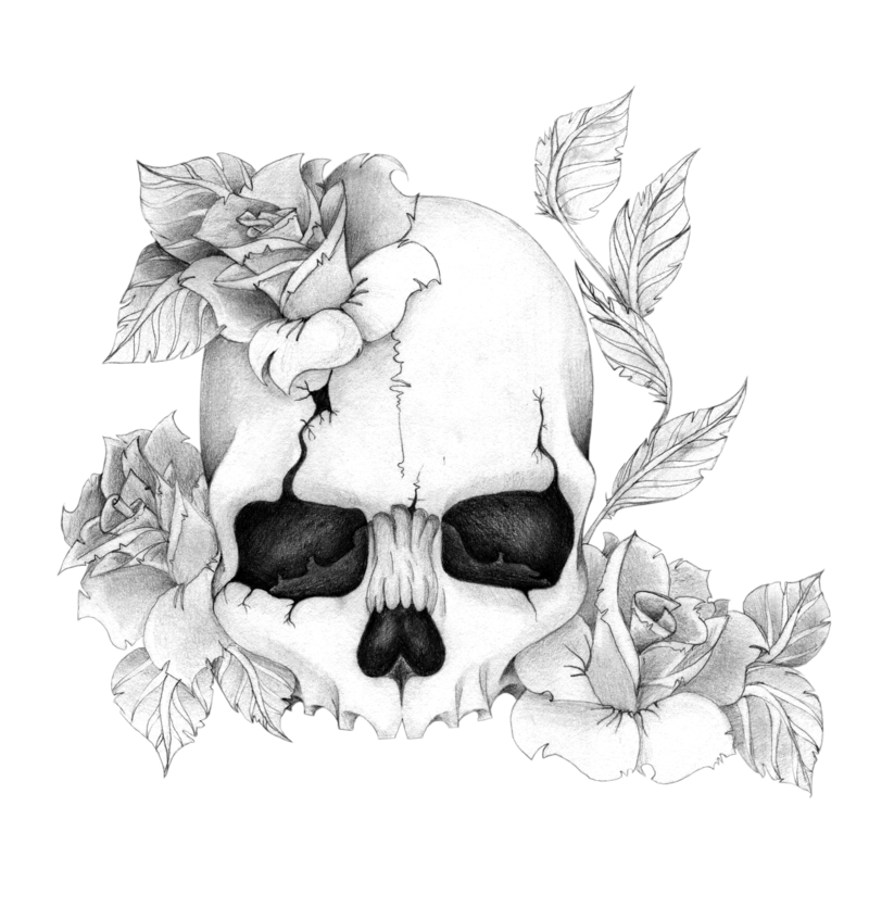 Skull N Roses By Skrzynia On Deviantart Skulls Drawing Skull Drawing Skull Art