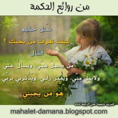 Mahalet Damana محلة دمنة حكمة اليوم Funny Jokes Blog Posts Blog