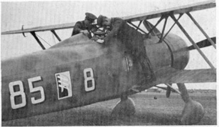 85 squadriglia 18o Gruppo CR. 42