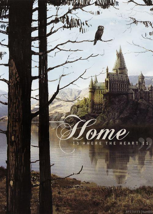 Home Is Where The Heart Is Harry Potter World Harry Potter Bilder