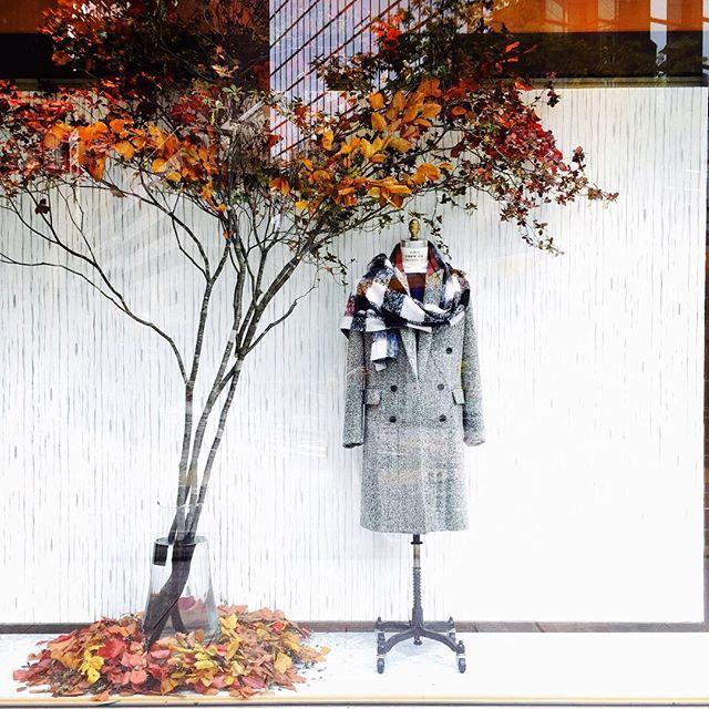 TOMORROWLAND Kobe @tomorrowland_kobe 〈2015FALL/WINTER...Instagram photo | Websta (Webstagram)