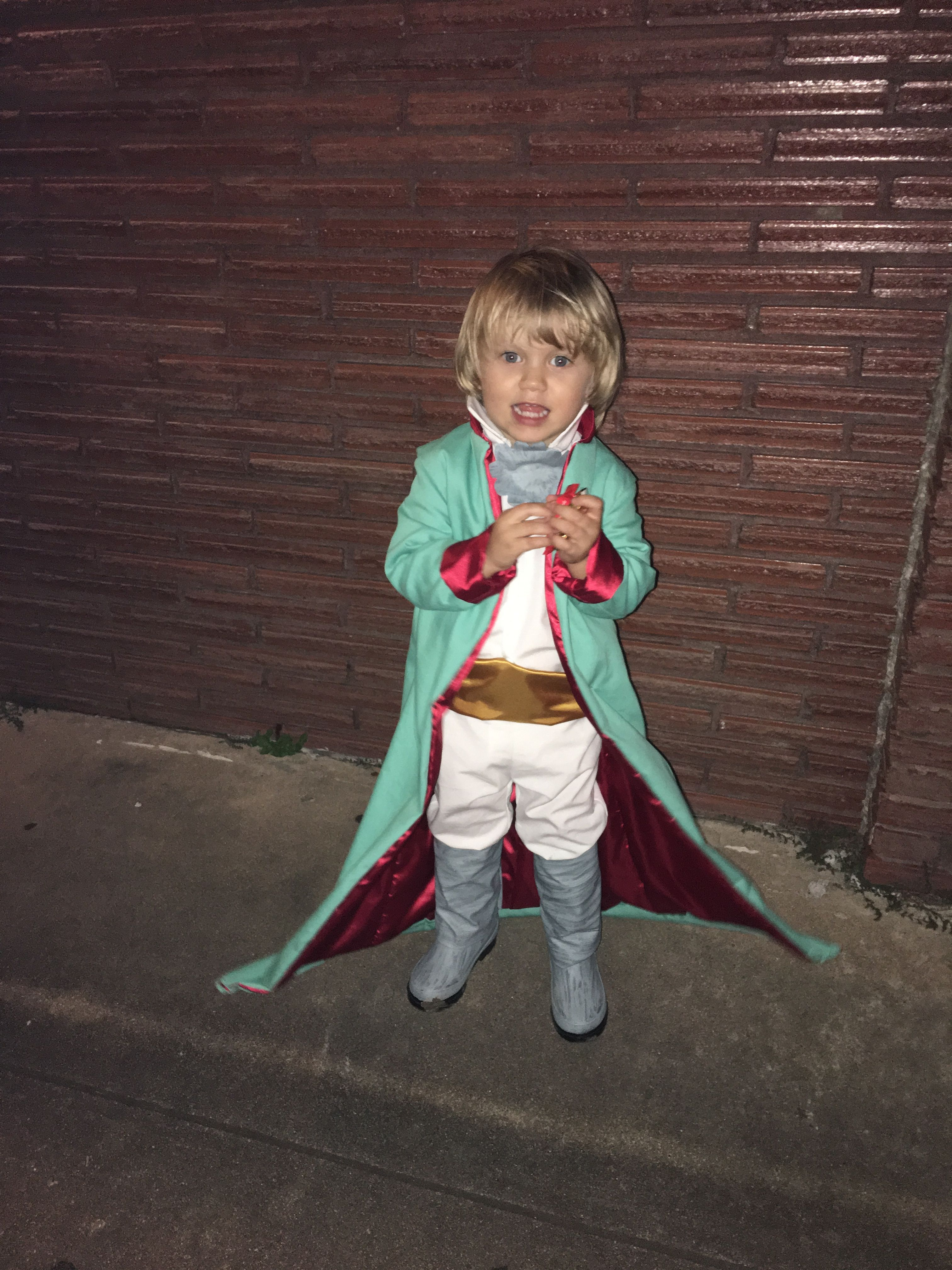 e4c9edeffc42 The Little Prince Costume Le Petit Prince Handmade Toddler Halloween Costume