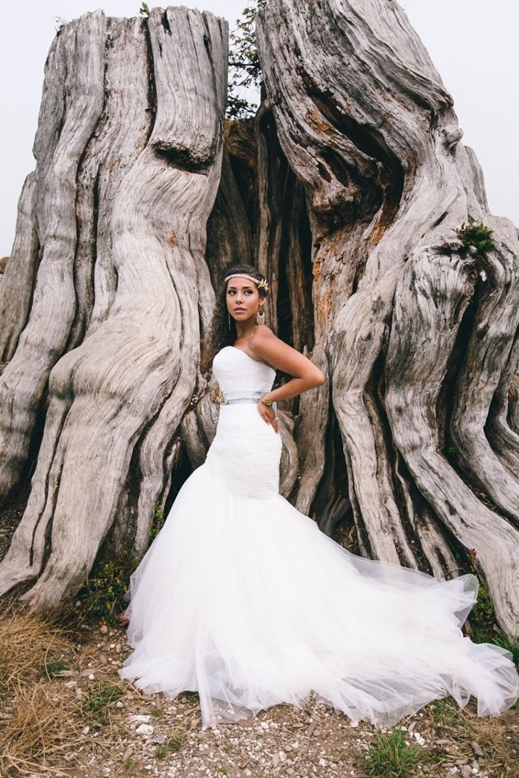 Seabrook WA Styled Wedding Shoot by Love Song Photo and Wonderstruck Event Design #tree #bride