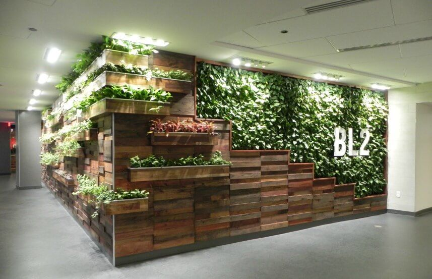 See how you can transform your space with one of Ambius\u0027 green walls