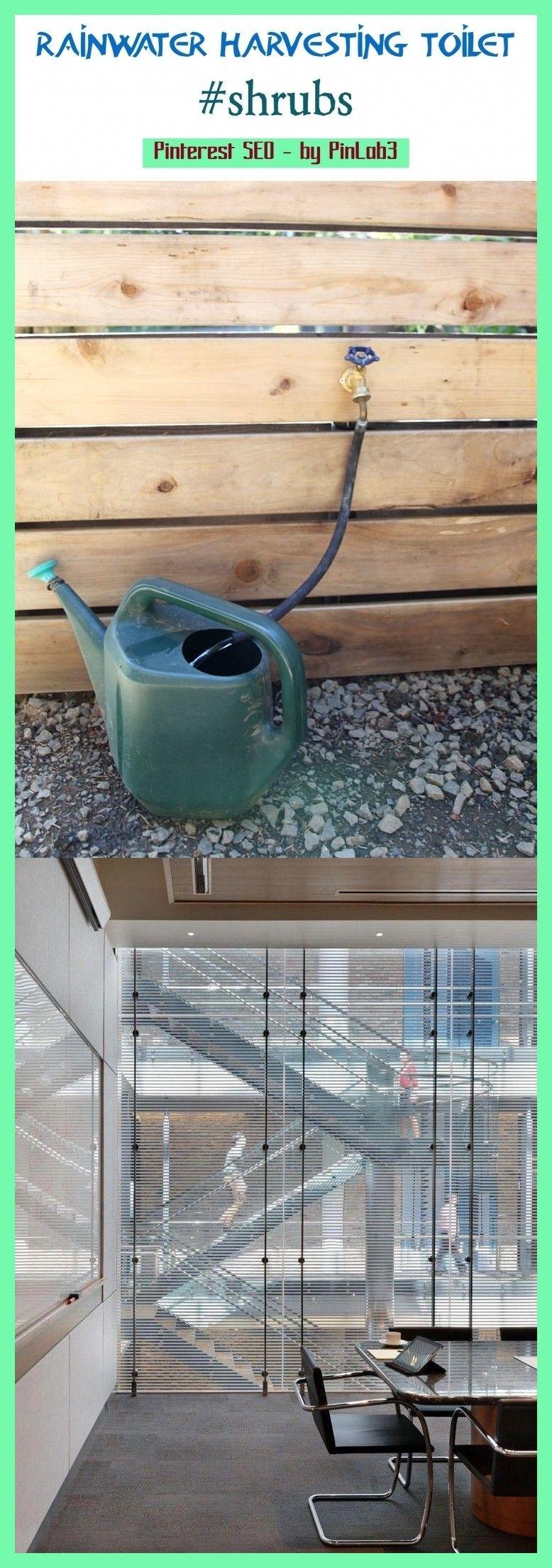 Rainwater harvesting toilet Regenwassertoilette  toilettes pour la récupération des eaux de pluie  inodoro para la recolección de agua de lluvia  rai...