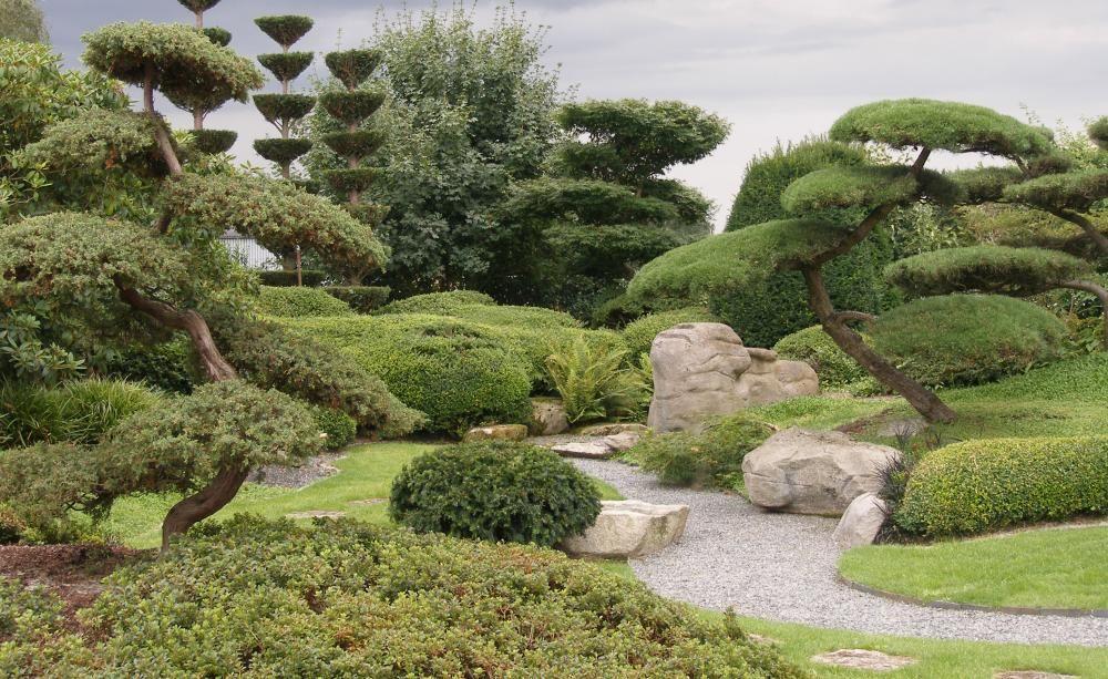 Gestaltungstipps Fur Japanische Garten Garten 조경 Und 나무