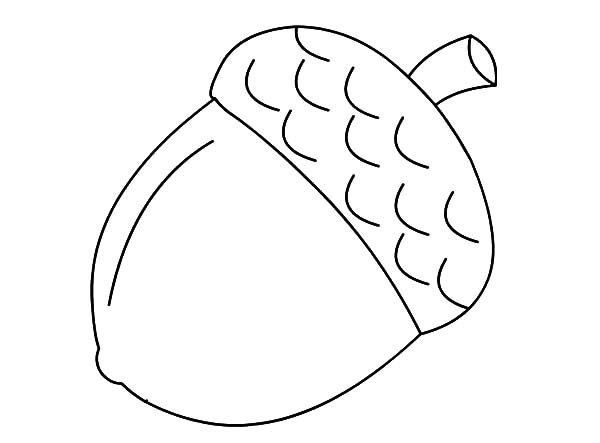 Acorn Coloring Page Fall Coloring Pages Fall Leaves Coloring Pages Fall Crafts For Kids