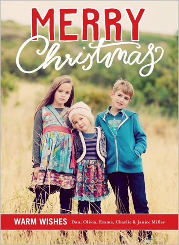 Scribbly Greetings Christmas Card Christmas Card Layouts