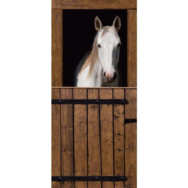 Door wall murals horse stables door mural wall mural for Equestrian wall mural
