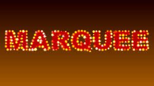 Image result for marquee lights