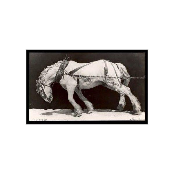 Pull It One More Mile Artsy Fartsy Horses Draft Horses Horse Print