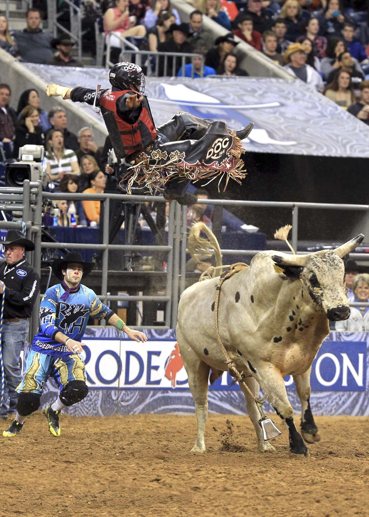 Fly 'em, cowboy! :)  Rodeo's and PBR!!! ( PROFESSIONAL BULL RIDING, not the beer)!