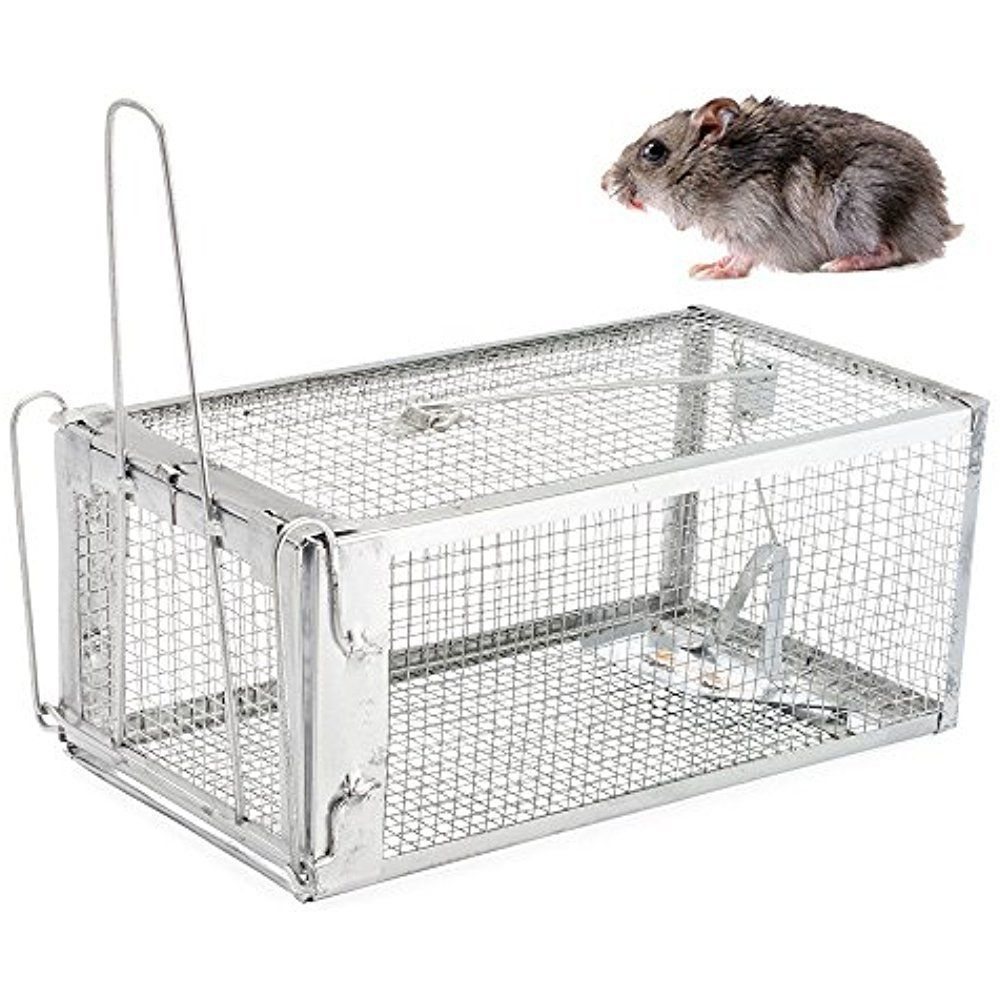 Humane Rat Trap W Starter Bait Catches Rats Mice Squirrels Raccoons Opossums Rat Traps Small Pets Rodent Problem