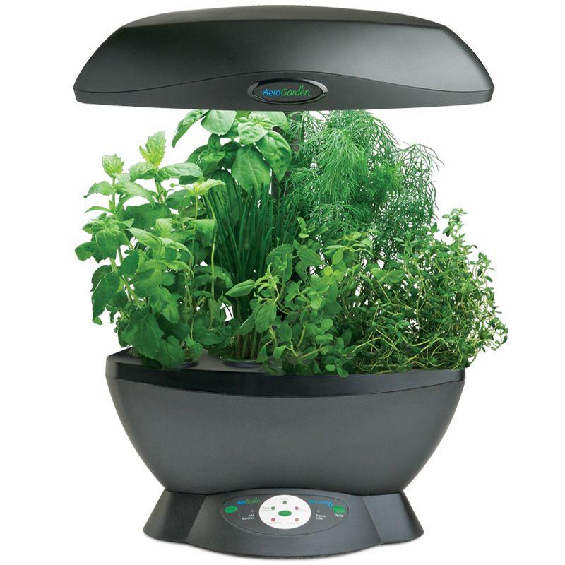 Hydroponic Garden Aerogarden At Indoor Herb Garden Dot Org Aerogarden Gourmet Herbs Herb Seeds