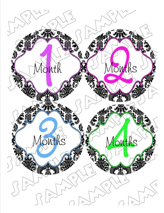 Damask Monthly Onesie Stickers Girl Elegant